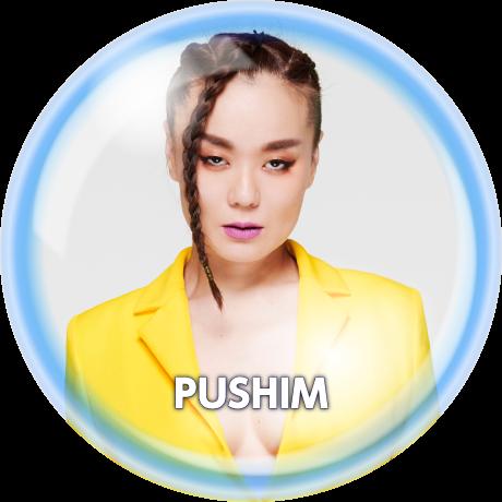 PUSHIM
